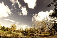 höstpark Arkivfoto