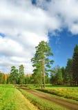höstpark till verticalen långt Royaltyfria Bilder