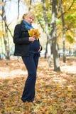 höstparkgravid kvinna Fotografering för Bildbyråer