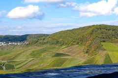 Höstplats av vinyards nära floden Moesel fotografering för bildbyråer