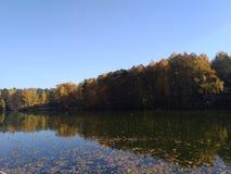 Höstreflexion av skogen i vattnet royaltyfria bilder