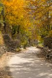 Höstsäsong i den Hunza dalen, Gilgit Baltistan, Pakistan Arkivfoto