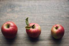 Höstsäsongstilleben med tre äpplen över lantlig träbakgrund Kopieringsutrymme som är horisontal Fotografering för Bildbyråer