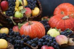 Höstsammansättning med äpplen, druvor, pumpa och skogskornell royaltyfri foto