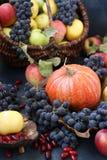 Höstsammansättning med äpplen, druvor, pumpa och skogskornell arkivfoton