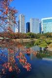 Höstsidor i Hamarikyu trädgårdar, Tokyo Arkivfoton