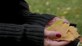 Höstsidor i kvinnliga händer Finger över sidorna stock video