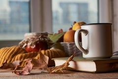 Höstsidor, kopp kaffe, varm halsduk, fruktkorg och bok arkivbilder