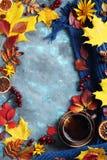 Höstsidor, kopp te och halsduk på blå bakgrund Arkivfoton