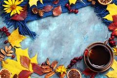 Höstsidor, kopp te och halsduk på blå bakgrund Arkivfoto