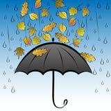 Höstsidor och paraply Arkivbild
