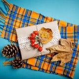 Höstsidor och sörjer kottar på en blå bakgrund höstbakgrundscloseupen colors orange red för murgrönaleaf Royaltyfri Foto