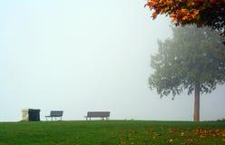 Höstsidor på en dimmig dag Arkivfoton