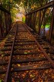 Höstsidor på en järnvägbro i York County, Pennsylvania. Royaltyfri Foto