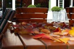 Höstsidor på en trätabell i en utomhus- restaurang Royaltyfri Foto
