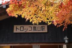 Höstsidor på gatan i Japan royaltyfria bilder