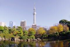 Höstsikt av den moderna Tokyo Royaltyfri Fotografi