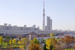 Höstsikt av den moderna Tokyo Royaltyfri Foto