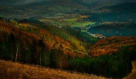 Höstsikt av det Tatra berget Arkivfoton