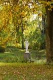 Höstsikt med scilpture i den gammala Pavlovsk parken Arkivbild