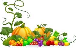 Höstskörd av grönsaker och frukter vektor illustrationer