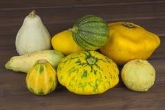 Höstskörd av pumpor halloween förbereda sig trädgårds- växande home grönsaker Ställe för din text Royaltyfria Bilder