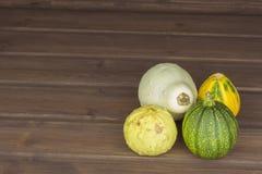 Höstskörd av pumpor halloween förbereda sig trädgårds- växande home grönsaker Ställe för din text Arkivfoto