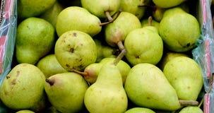 Höstskörden av päron stänger sig upp lager videofilmer