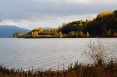 Höstskog över fjorden i Telemark, Norge Royaltyfria Bilder