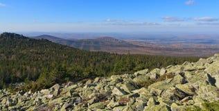 Höstskog i avståndet Royaltyfri Bild
