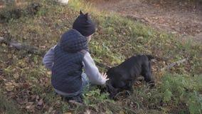 Höstskog med en pojke och hans hund svart spaniel arkivfilmer