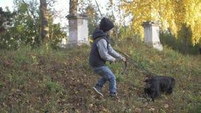 Höstskog med en pojke och hans hund svart spaniel lager videofilmer