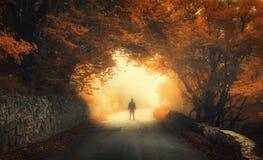 Höstskog med konturn av en man på den lantliga vägen royaltyfri fotografi