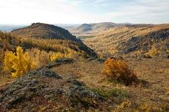 Höstskog och berg Royaltyfria Foton