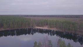 Höstskog och sjö flyg- sikt arkivfilmer