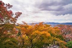 Höstskog på Kiyomizu-dera den buddistiska templet, Kyoto, Japan fotografering för bildbyråer