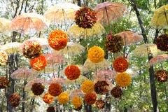 Höstskogen, parkerar, gatan, var många paraplyer med gul och orange sidahängning sväva mot himlen och höstlövverket royaltyfria foton