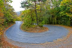 höstskogväg arkivbild