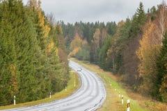 Höstskogväg med få bilar i ett avstånd royaltyfri foto