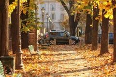 höststaden houses leavestreesyellow Arkivbilder