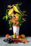 Höststilleben med äpplen och skogskornell Arkivfoto