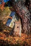 Höststilleben med gamla bygga bo askar arkivbild