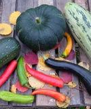 Höststilleben med mogna grönsaker Arkivfoton