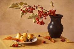 Höststilleben med pears och äpplen arkivfoto