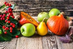 Höststilleben med pumpor och äpplen Nedgångskördbegrepp arkivfoto