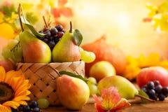 Höststilleben med säsongsbetonade frukter royaltyfria bilder