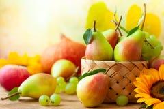 Höststilleben med säsongsbetonade frukter royaltyfri foto