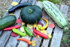 Höststilleben med utomhus- mogna grönsaker Arkivfoton