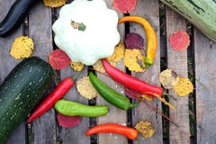 Höststilleben med utomhus- mogna grönsaker Arkivbilder