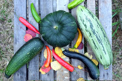 Höststilleben med utomhus- mogna grönsaker Royaltyfri Bild